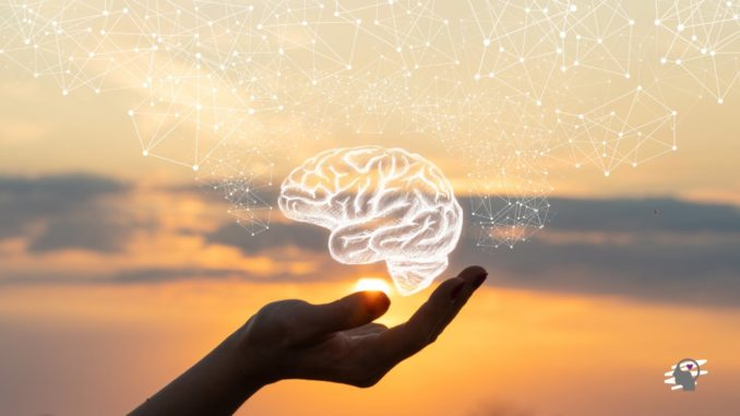 cuidados con el cerebro