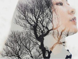 árbol como terapeuta