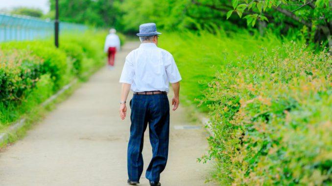paseo naturaleza