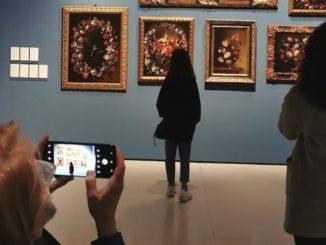 fotos museo